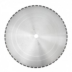 Disc diamantat BS-W 700/60mm DR.SCHULZE, caramida
